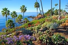 Heisler-Park gestaltete Gärten, Laguna Beach, Kalifornien landschaftlich. Lizenzfreie Stockfotos