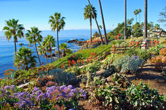 Heisler Park landscaped gardens, Laguna Beach, California. Heisler Park is a beautifully landscaped park which sits on the bluffs directly above several North Royalty Free Stock Photos