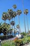 Heisler Park landscaped gardens, Laguna Beach, California. Stock Photos