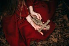 Heks in bos stock afbeeldingen