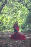 Heks in een rode mantel onder stock afbeelding
