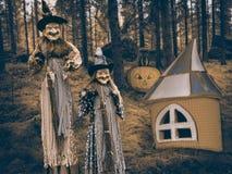 Heks en pompoen in het donkere bos tijdens de Halloween-partij Stock Afbeeldingen