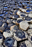 Heksagonalne Bazaltowe cegiełki giganta droga na grobli Fotografia Royalty Free