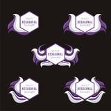 Heksagonalny sztandar z Falistym i astronautycznym dla teksta lub loga Zdjęcia Stock