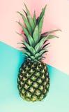 Hel ananas på adutonebakgrund Royaltyfria Foton