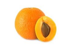 Hel apelsin och halv aprikos med den isolerade stenen Arkivbilder