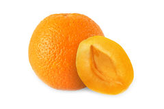 Hel apelsin och halv aprikos utan den isolerade stenen Royaltyfria Bilder