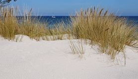 Hel city in Poland stock images. Sand dunes on the Baltic Sea. White sandy beach. Polish city of Hel Royalty Free Stock Photos