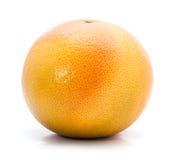 hel grapefrukt Arkivbild