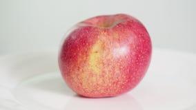 Hel mogen rosa äpplefrukt på den vita plattan roterar arkivfilmer