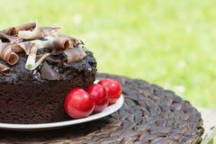 Hel rik chokladkaka Royaltyfria Foton