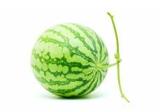 hel vattenmelon för clippingbana Royaltyfri Fotografi