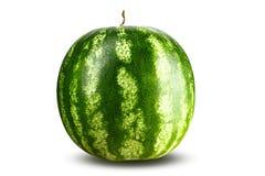 Hel vattenmelonurklippbana royaltyfri bild