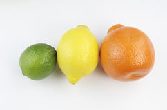 Hela citrusfrukter Royaltyfri Foto