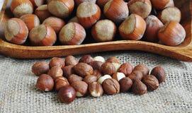 Hela hasselnötter och besköt hasselnötter Royaltyfri Fotografi