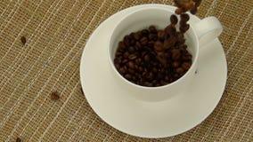Hela kaffebönor som faller in i koppen arkivfilmer