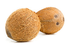 hela kokosnötter Royaltyfria Foton