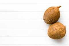 hela kokosnötter Fotografering för Bildbyråer