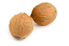 hela kokosnötter Arkivbild