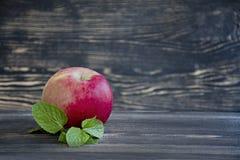 Hela nya äpplen med mintkaramellen på träbakgrund royaltyfri foto