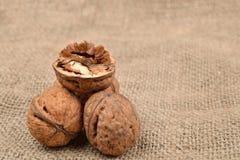 Hela och brutna valnötter på jutebakgrund sund mat selec Royaltyfri Fotografi