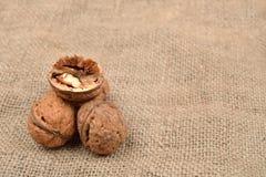 Hela och brutna valnötter på jutebakgrund sund mat selec Arkivfoto