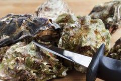 Hela ostron med en kniv arkivfoton