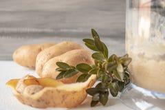 Hela potatisar bredvid en blandare av jordpotatisar arkivfoto