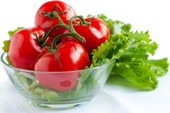 hela röda tomater för filial Royaltyfri Fotografi