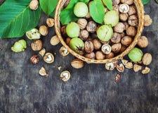 Hela valnötter och gjort klar i begreppet för bästa sikt för korgsvartdet träbakgrund sunda Royaltyfri Fotografi