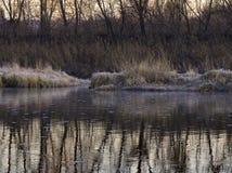 Helada de la mañana en el banco del río Ini foto de archivo