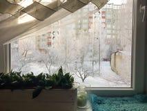 Helada del invierno de la opinión de la ventana de la casa Fotos de archivo