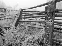 Helada en la cerca de la granja Imágenes de archivo libres de regalías