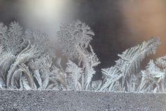 Helada inusual en una ventana del invierno Foto de archivo libre de regalías