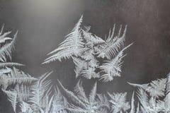 Helada inusual en una ventana del invierno Imagen de archivo libre de regalías