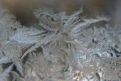 Helada inusual en una ventana del invierno Fotos de archivo