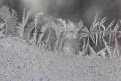 Helada inusual en una ventana del invierno Imagenes de archivo