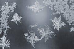 Helada inusual en una ventana del invierno Fotografía de archivo