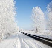 Helada y nieve en el invierno Foto de archivo libre de regalías