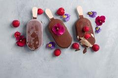 Helado clásico de chocolate con la baya foto de archivo libre de regalías