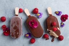 Helado clásico de chocolate con la baya imágenes de archivo libres de regalías