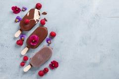Helado clásico de chocolate con la baya fotografía de archivo libre de regalías