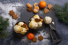 Helado con el pan de jengibre y la mandarina Fotos de archivo