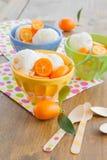 Helado con los kumquats Foto de archivo