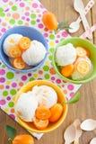 Helado con los kumquats Imagen de archivo libre de regalías