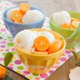 Helado con los kumquats Fotografía de archivo libre de regalías