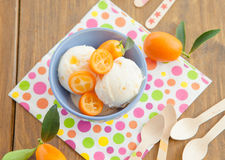 Helado con los kumquats Fotos de archivo libres de regalías