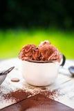 Helado de chocolate dulce con el polvo de cacao en cuenco del vintage y con la cuchara del helado Imagen de archivo libre de regalías