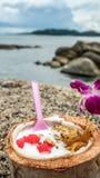 Helado de coco con las nueces Foto de archivo libre de regalías