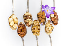 Spoons with healthy snacks Stock Photos